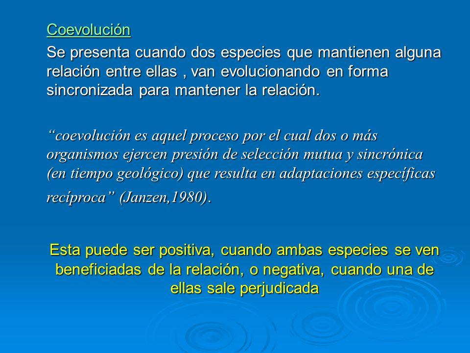 Coevolución Se presenta cuando dos especies que mantienen alguna relación entre ellas, van evolucionando en forma sincronizada para mantener la relaci