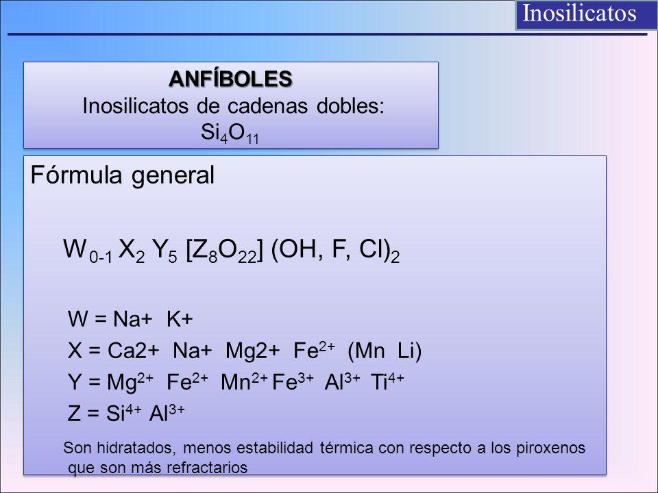 Fórmula general W 0-1 X 2 Y 5 [Z 8 O 22 ] (OH, F, Cl) 2 W = Na+ K+ X = Ca2+ Na+ Mg2+ Fe 2+ (Mn Li) Y = Mg 2+ Fe 2+ Mn 2+ Fe 3+ Al 3+ Ti 4+ Z = Si 4+ A