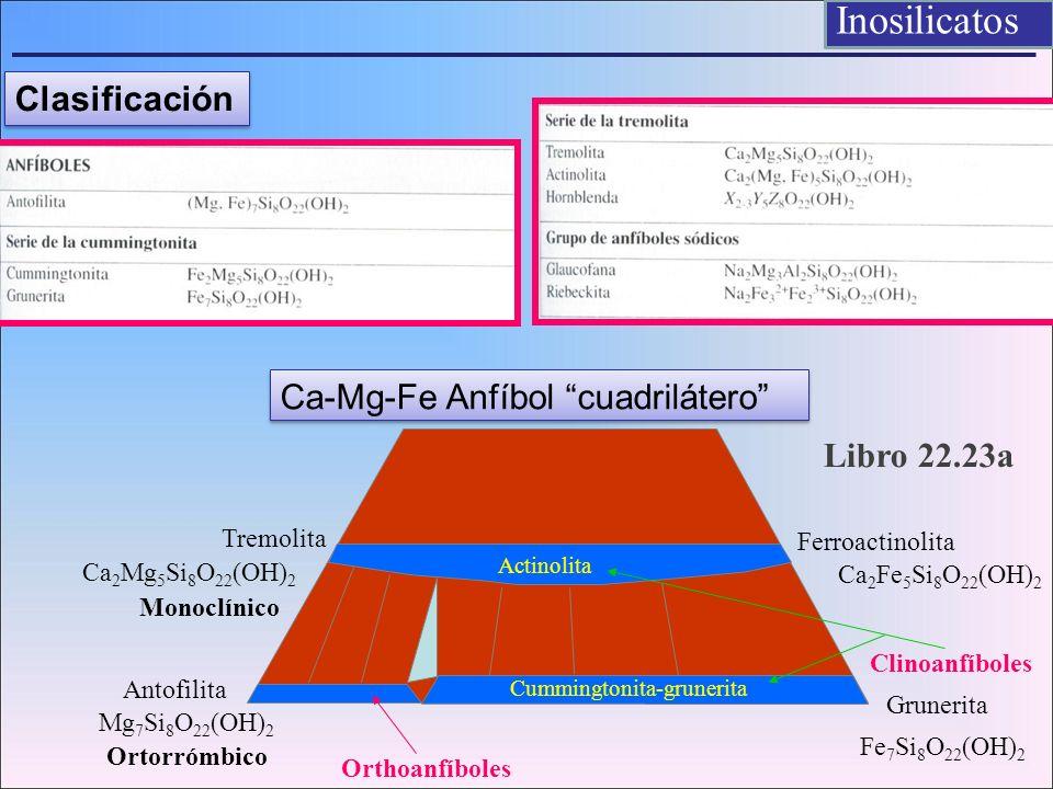 Ca-Mg-Fe Anfíbol cuadrilátero Tremolita Ca 2 Mg 5 Si 8 O 22 (OH) 2 Ferroactinolita Ca 2 Fe 5 Si 8 O 22 (OH) 2 Antofilita Mg 7 Si 8 O 22 (OH) 2 Fe 7 Si