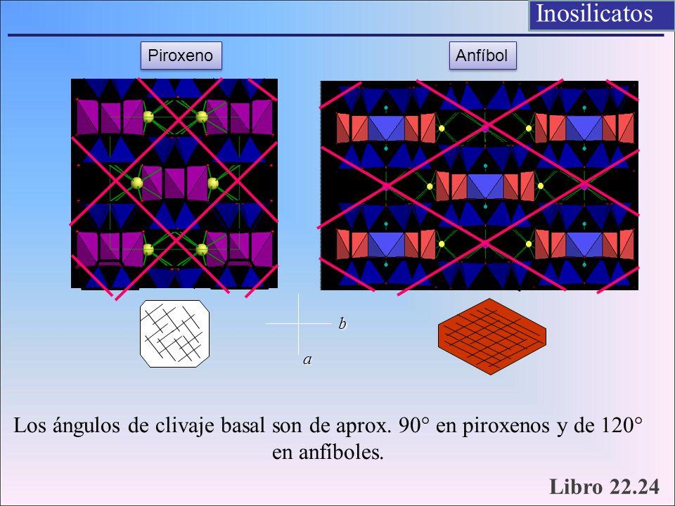 Los ángulos de clivaje basal son de aprox. 90° en piroxenos y de 120° en anfíboles. Piroxeno Anfíbol a b Inosilicatos Libro 22.24