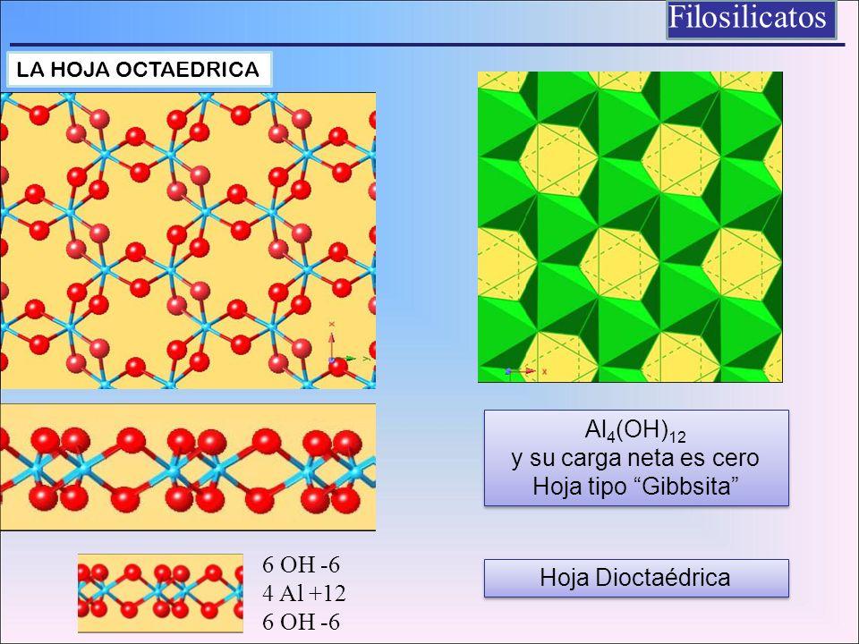 Filosilicatos LA HOJA OCTAEDRICA Al 4 (OH) 12 y su carga neta es cero Hoja tipo Gibbsita Al 4 (OH) 12 y su carga neta es cero Hoja tipo Gibbsita 6 OH