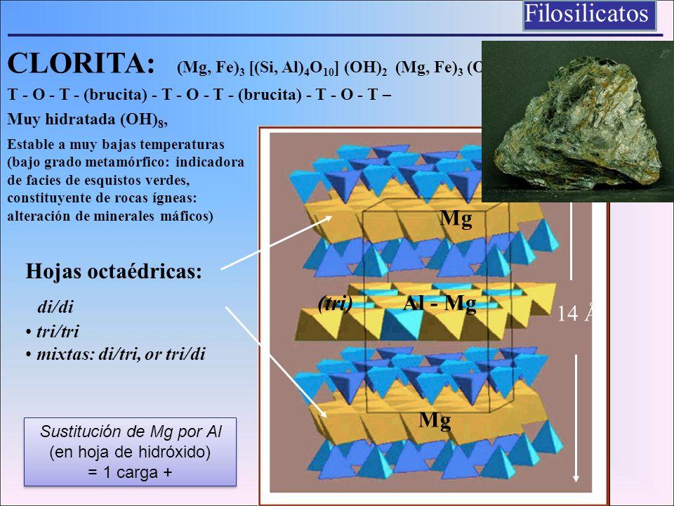 CLORITA: (Mg, Fe) 3 [(Si, Al) 4 O 10 ] (OH) 2 (Mg, Fe) 3 (OH) 6 T - O - T - (brucita) - T - O - T - (brucita) - T - O - T – Muy hidratada (OH) 8, 14 Å