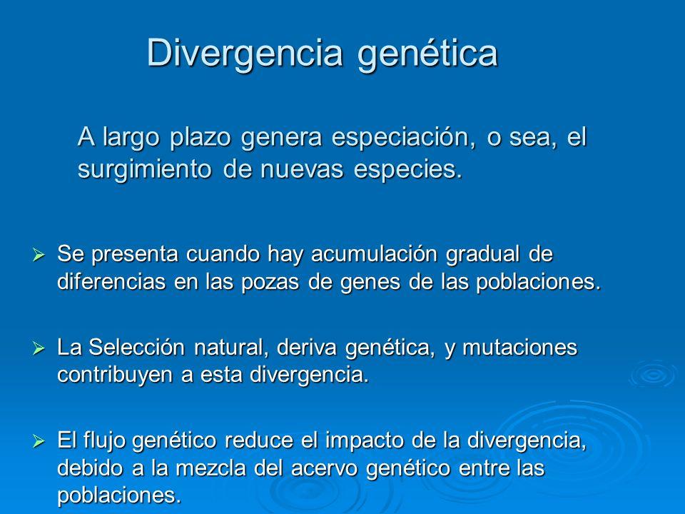 Divergencia genética A largo plazo genera especiación, o sea, el surgimiento de nuevas especies. Se presenta cuando hay acumulación gradual de diferen