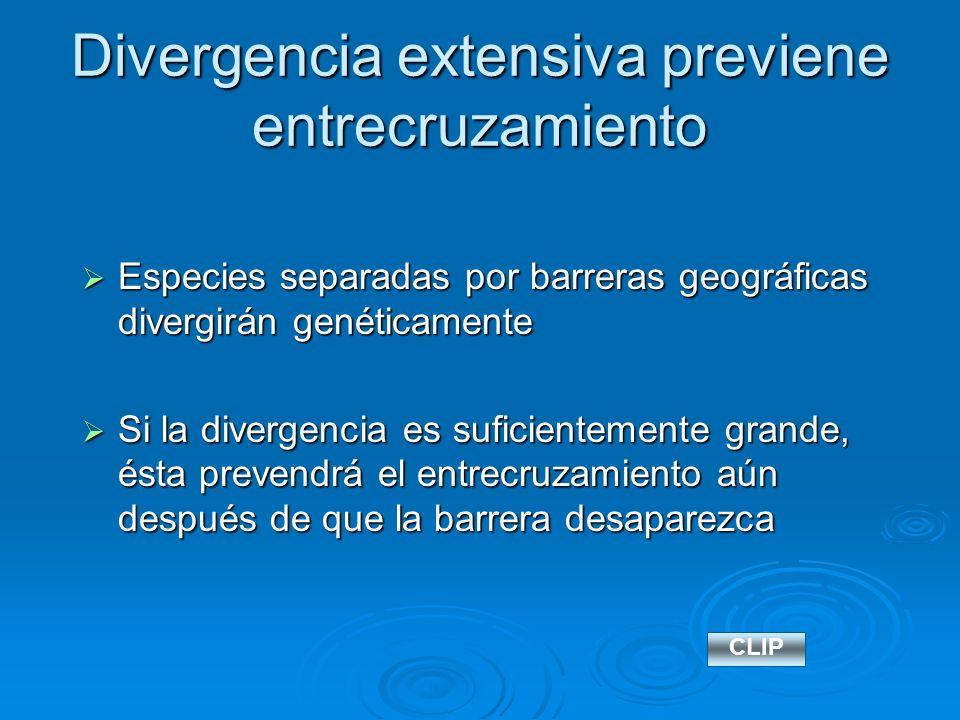 Divergencia extensiva previene entrecruzamiento Especies separadas por barreras geográficas divergirán genéticamente Especies separadas por barreras g
