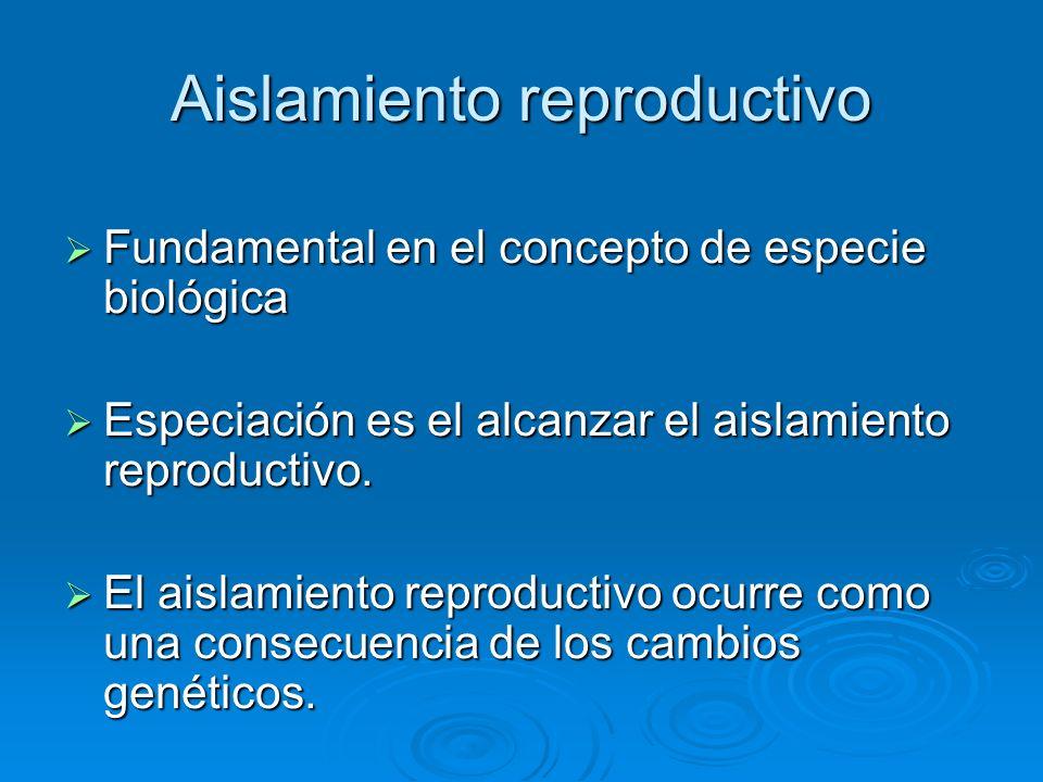Aislamiento reproductivo Fundamental en el concepto de especie biológica Fundamental en el concepto de especie biológica Especiación es el alcanzar el