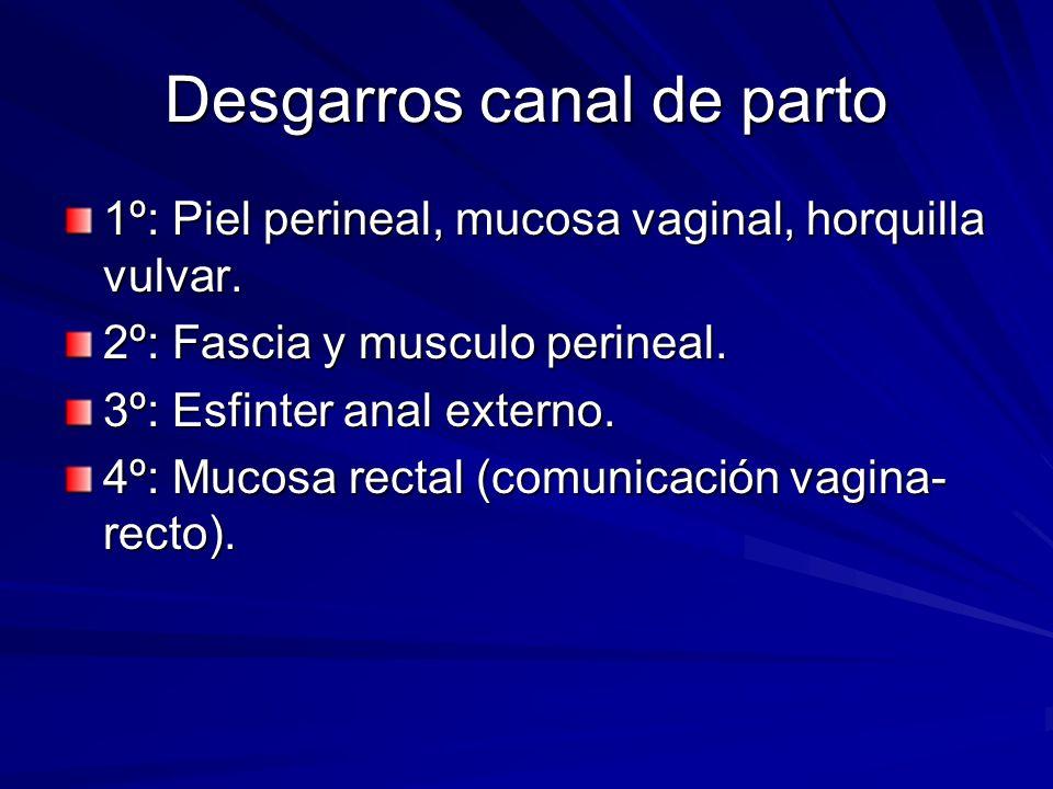 Desgarros canal de parto 1º: Piel perineal, mucosa vaginal, horquilla vulvar. 2º: Fascia y musculo perineal. 3º: Esfinter anal externo. 4º: Mucosa rec