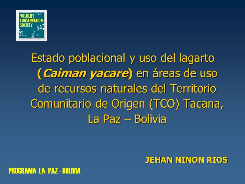 Estado poblacional y uso del lagarto (Caiman yacare) en áreas de uso de recursos naturales del Territorio Comunitario de Origen (TCO) Tacana, La Paz –