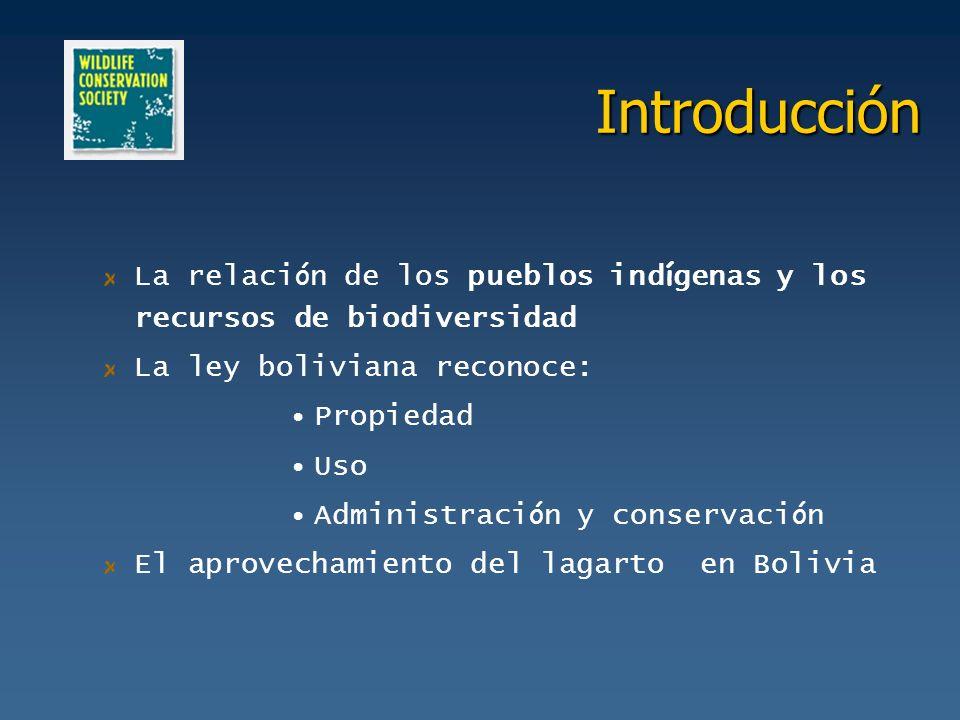 Introducción La relaci ó n de los pueblos ind í genas y los recursos de biodiversidad La ley boliviana reconoce: Propiedad Uso Administraci ó n y cons
