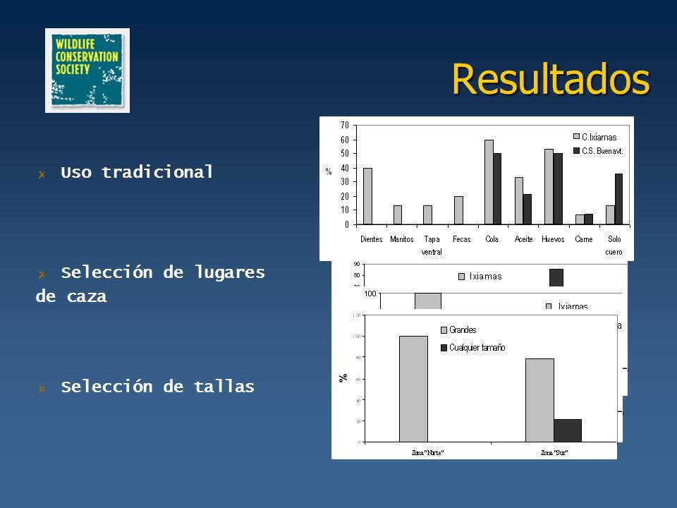 Discusión Abundancia de Caiman yacare La variación de las condiciones físico - químicas (GUYOT 1993, DUQUE et al.