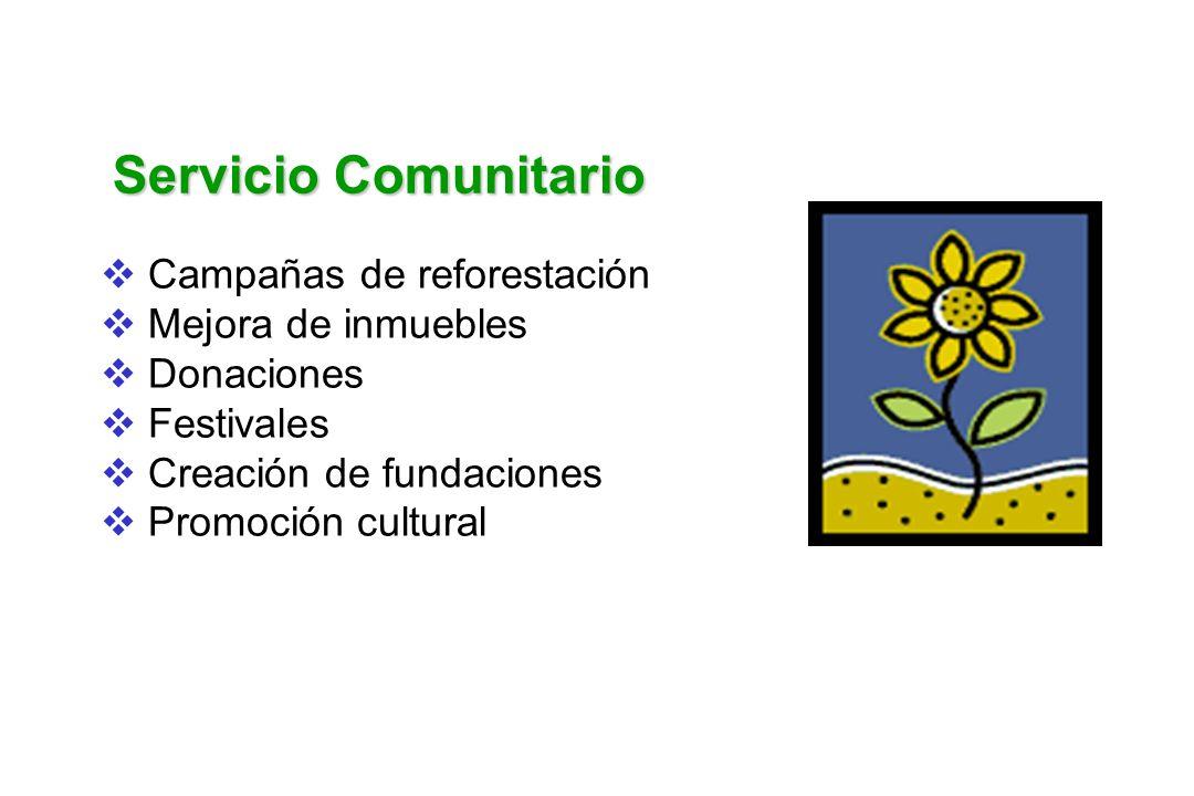 Servicio Comunitario Campañas de reforestación Mejora de inmuebles Donaciones Festivales Creación de fundaciones Promoción cultural
