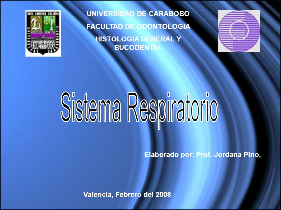 UNIVERSIDAD DE CARABOBO FACULTAD DE ODONTOLOGIA HISTOLOGIA GENERAL Y BUCODENTAL Valencia, Febrero del 2008 Elaborado por: Prof. Jordana Pino.