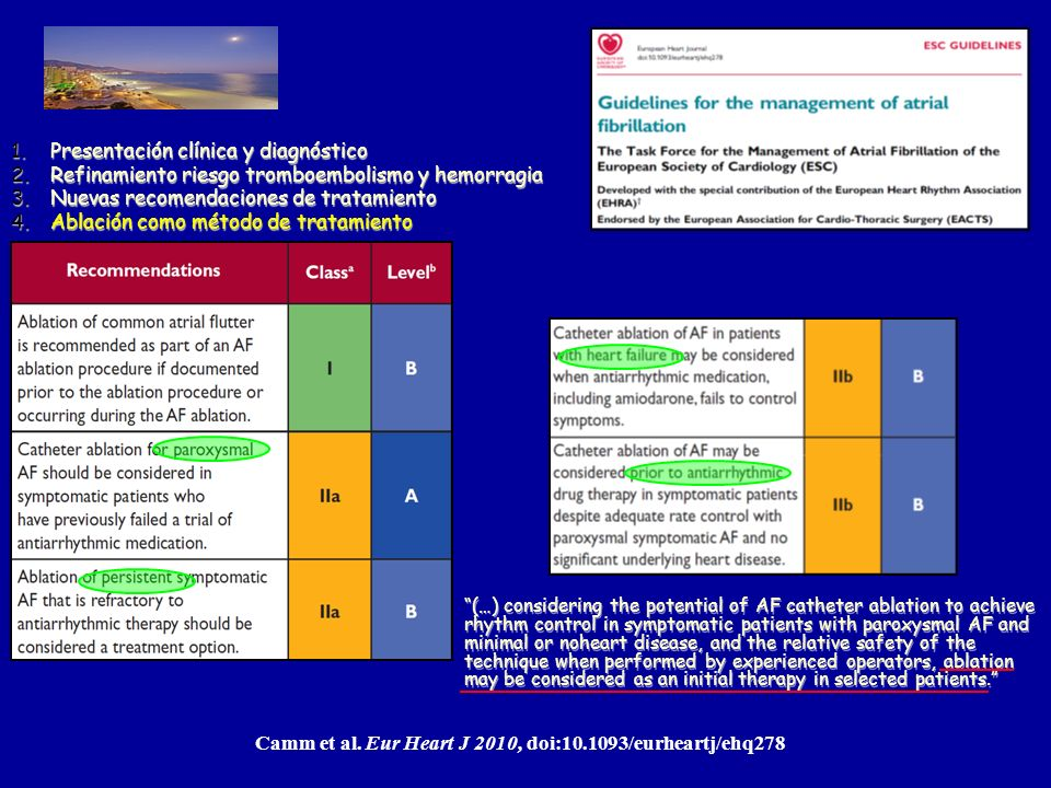 Update 2011 Fuengirola, Málaga Camm et al. Eur Heart J 2010, doi:10.1093/eurheartj/ehq278 1.Presentación clínica y diagnóstico 2.Refinamiento riesgo t
