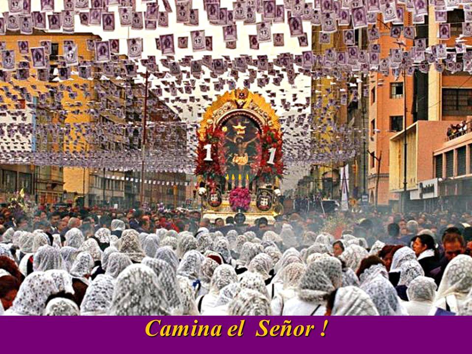 Salida del Señor de los Milagros Salida del Señor de los Milagros El primer sábado de octubre, a las 12 del medio día, tañen las campanas de su templo