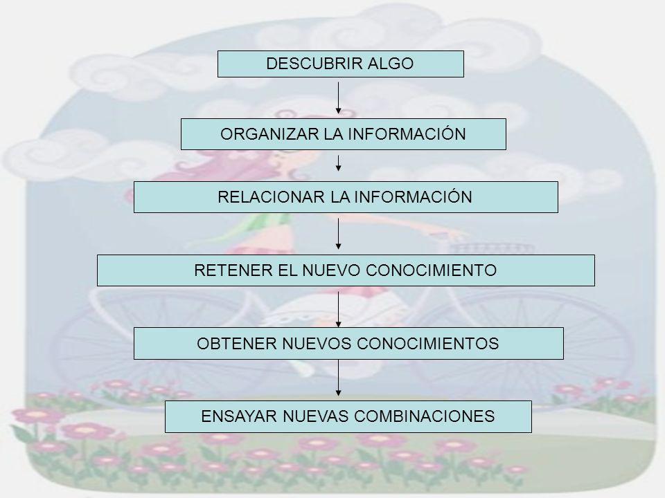 DESCUBRIR ALGO ORGANIZAR LA INFORMACIÓN RELACIONAR LA INFORMACIÓN OBTENER NUEVOS CONOCIMIENTOS RETENER EL NUEVO CONOCIMIENTO ENSAYAR NUEVAS COMBINACIO
