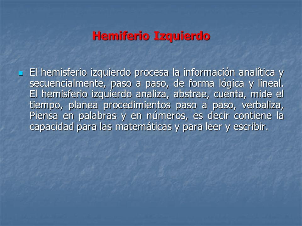 Hemiferio Izquierdo El hemisferio izquierdo procesa la información analítica y secuencialmente, paso a paso, de forma lógica y lineal. El hemisferio i