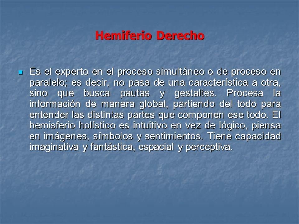 Hemiferio Derecho Es el experto en el proceso simultáneo o de proceso en paralelo; es decir, no pasa de una característica a otra, sino que busca paut
