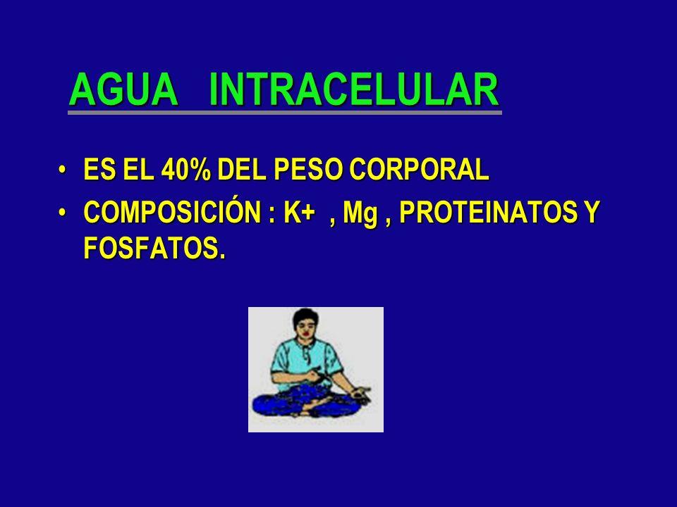 LIQUIDO EXTRACELULAR ES EL 20% DEL PESO CORPORAL ES EL 20% DEL PESO CORPORAL CONTIENE: Na,Cl-,HCO3 CONTIENE: Na,Cl-,HCO3 PROTEINAS ( LEY GIBBS- DONNAN