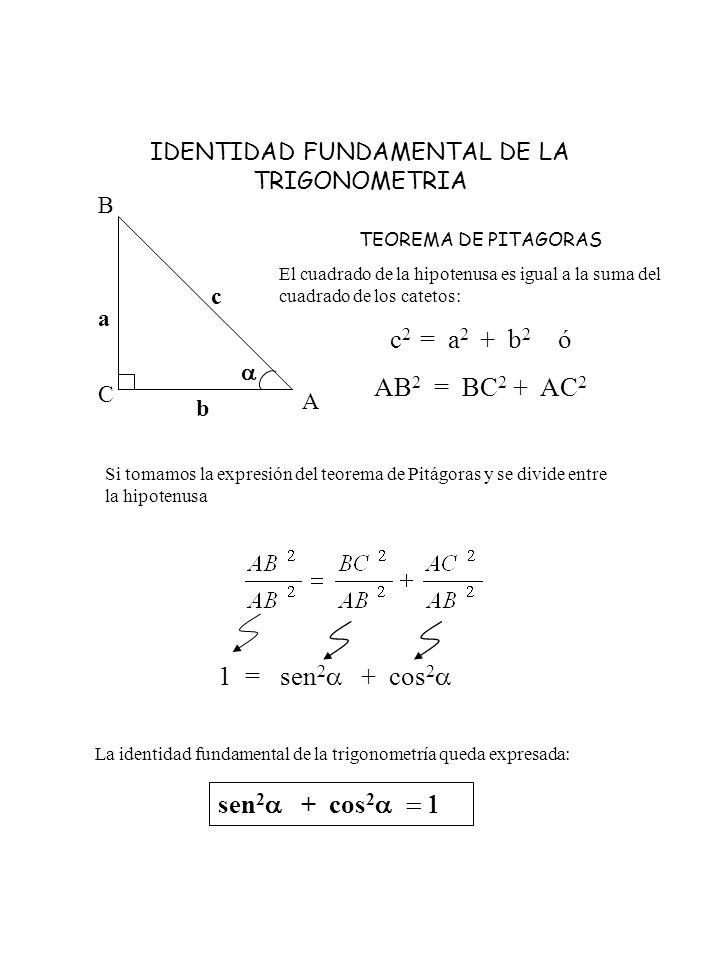IDENTIDAD FUNDAMENTAL DE LA TRIGONOMETRIA A C B c a b TEOREMA DE PITAGORAS El cuadrado de la hipotenusa es igual a la suma del cuadrado de los catetos
