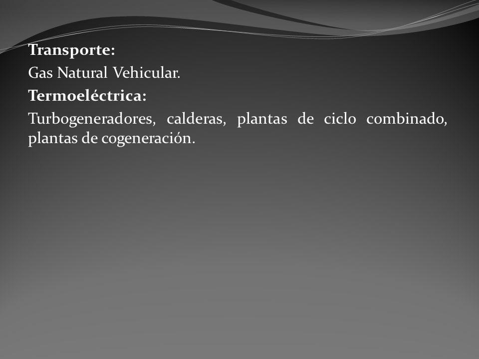 Transporte: Gas Natural Vehicular. Termoeléctrica: Turbogeneradores, calderas, plantas de ciclo combinado, plantas de cogeneración.