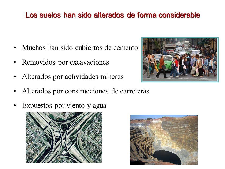 Los suelos han sido alterados de forma considerable Muchos han sido cubiertos de cemento Removidos por excavaciones Alterados por actividades mineras