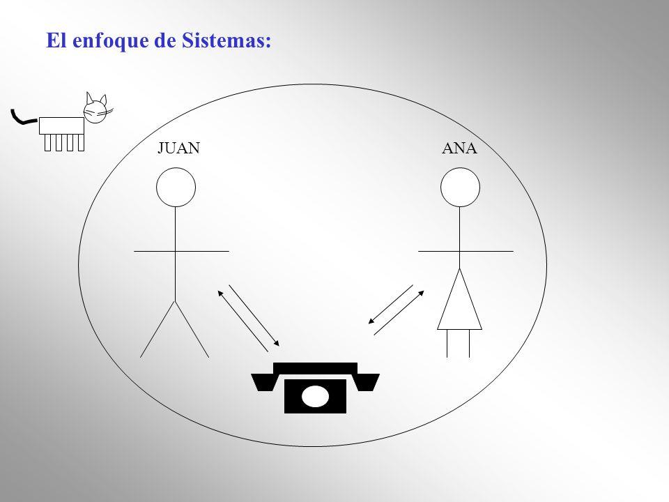 El enfoque de Sistemas: JUANANA