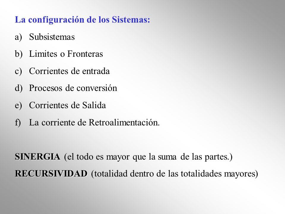 La configuración de los Sistemas: a)Subsistemas b)Limites o Fronteras c)Corrientes de entrada d)Procesos de conversión e)Corrientes de Salida f)La cor