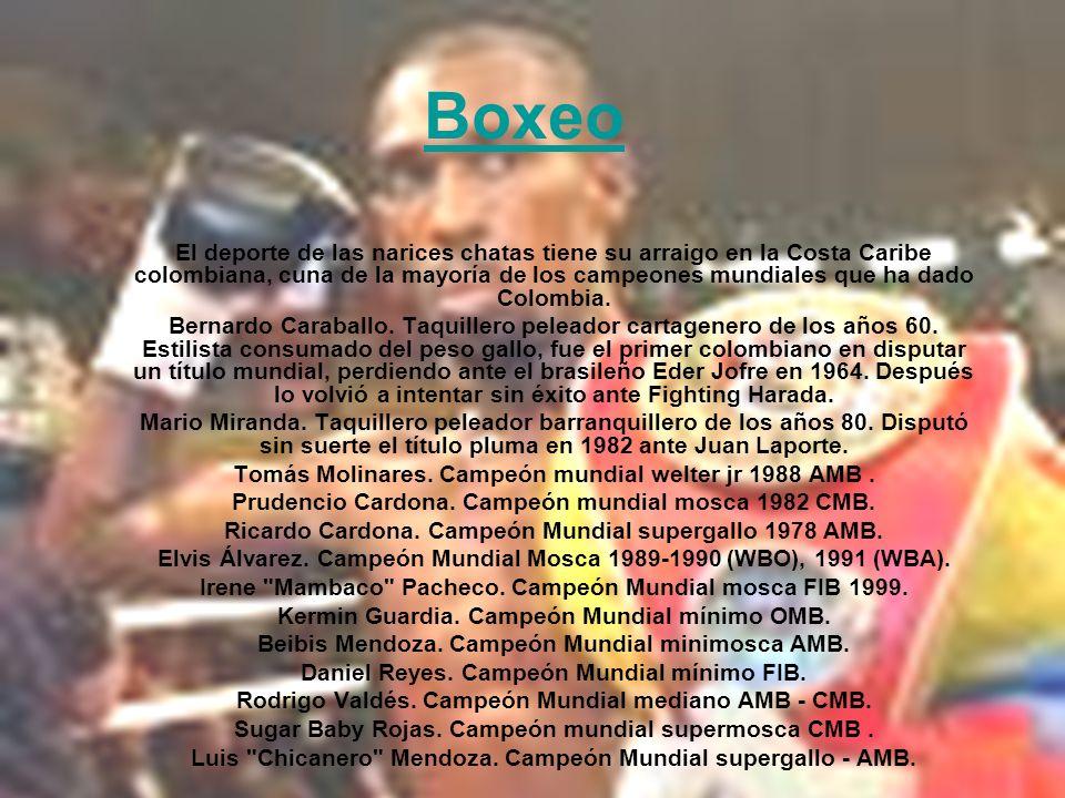 Boxeo El deporte de las narices chatas tiene su arraigo en la Costa Caribe colombiana, cuna de la mayoría de los campeones mundiales que ha dado Colom