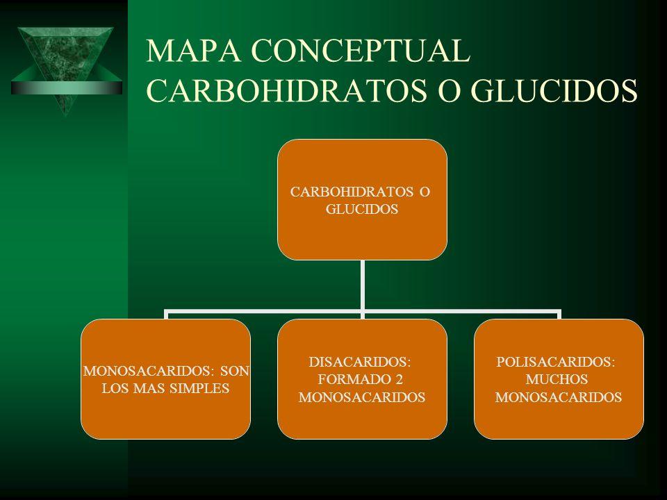 MAPA CONCEPTUAL CARBOHIDRATOS O GLUCIDOS CARBOHIDRATOS O GLUCIDOS MONOSACARIDOS: SON LOS MAS SIMPLES DISACARIDOS: FORMADO 2 MONOSACARIDOS POLISACARIDO