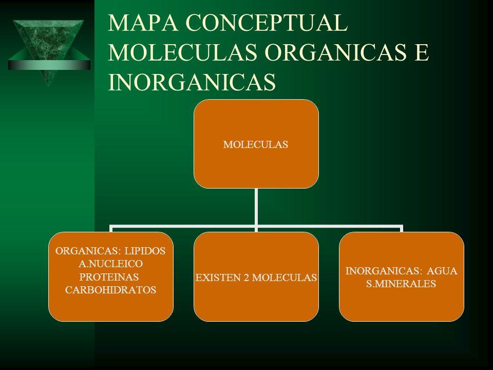 MAPA CONCEPTUAL MOLECULAS ORGANICAS E INORGANICAS MOLECULAS ORGANICAS: LIPIDOS A.NUCLEICO PROTEINAS CARBOHIDRATOS EXISTEN 2 MOLECULAS INORGANICAS: AGU