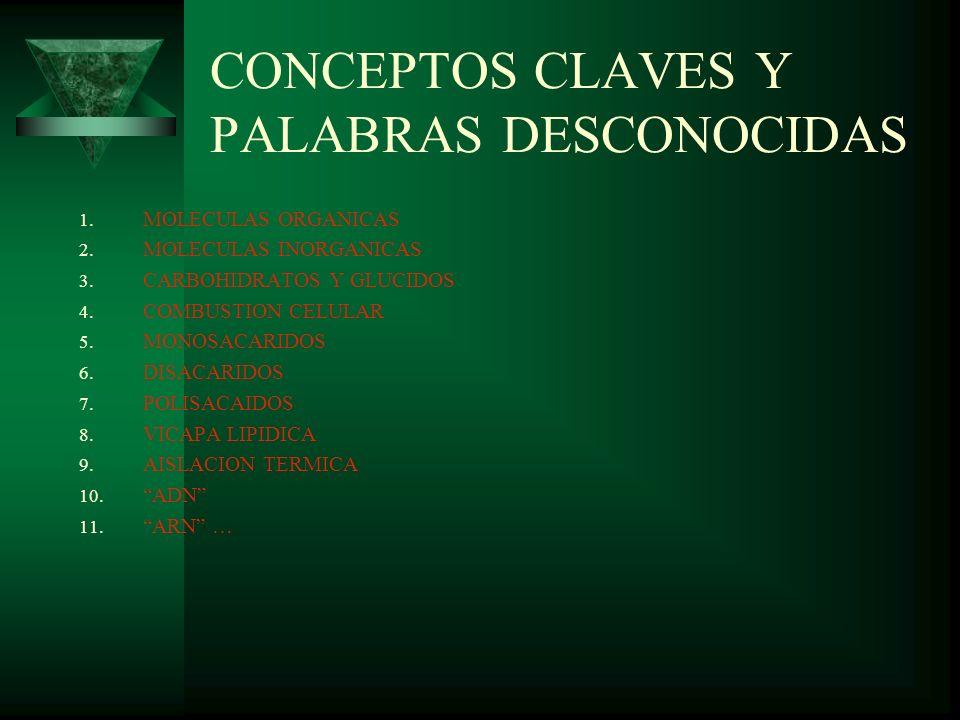 CONCEPTOS CLAVES Y PALABRAS DESCONOCIDAS 1. MOLECULAS ORGANICAS 2. MOLECULAS INORGANICAS 3. CARBOHIDRATOS Y GLUCIDOS 4. COMBUSTION CELULAR 5. MONOSACA