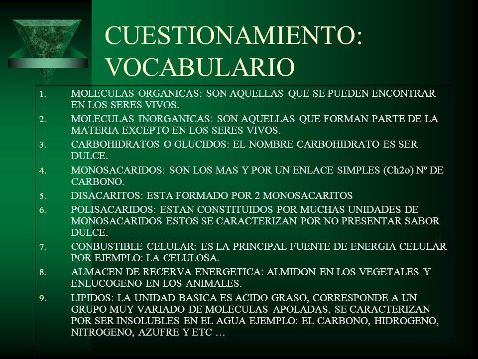 CUESTIONAMIENTO: VOCABULARIO 1. MOLECULAS ORGANICAS: SON AQUELLAS QUE SE PUEDEN ENCONTRAR EN LOS SERES VIVOS. 2. MOLECULAS INORGANICAS: SON AQUELLAS Q