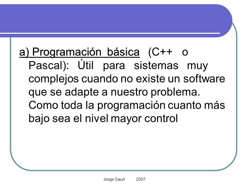 Jorge Sauri 2007 a) Programación básica a) Programación básica (C++ o Pascal): Útil para sistemas muy complejos cuando no existe un software que se ad