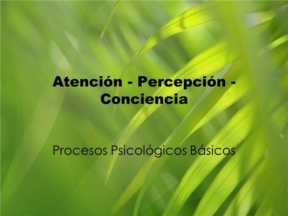 Atención - Percepción - Conciencia Procesos Psicológicos Básicos