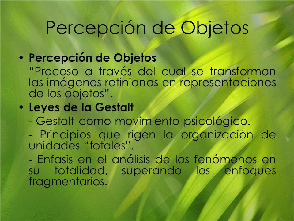 Percepción de Objetos Proceso a través del cual se transforman las imágenes retinianas en representaciones de los objetos. Leyes de la Gestalt - Gesta