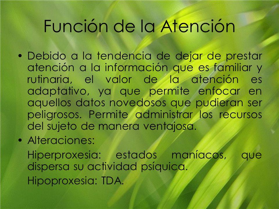 Función de la Atención Debido a la tendencia de dejar de prestar atención a la información que es familiar y rutinaria, el valor de la atención es ada