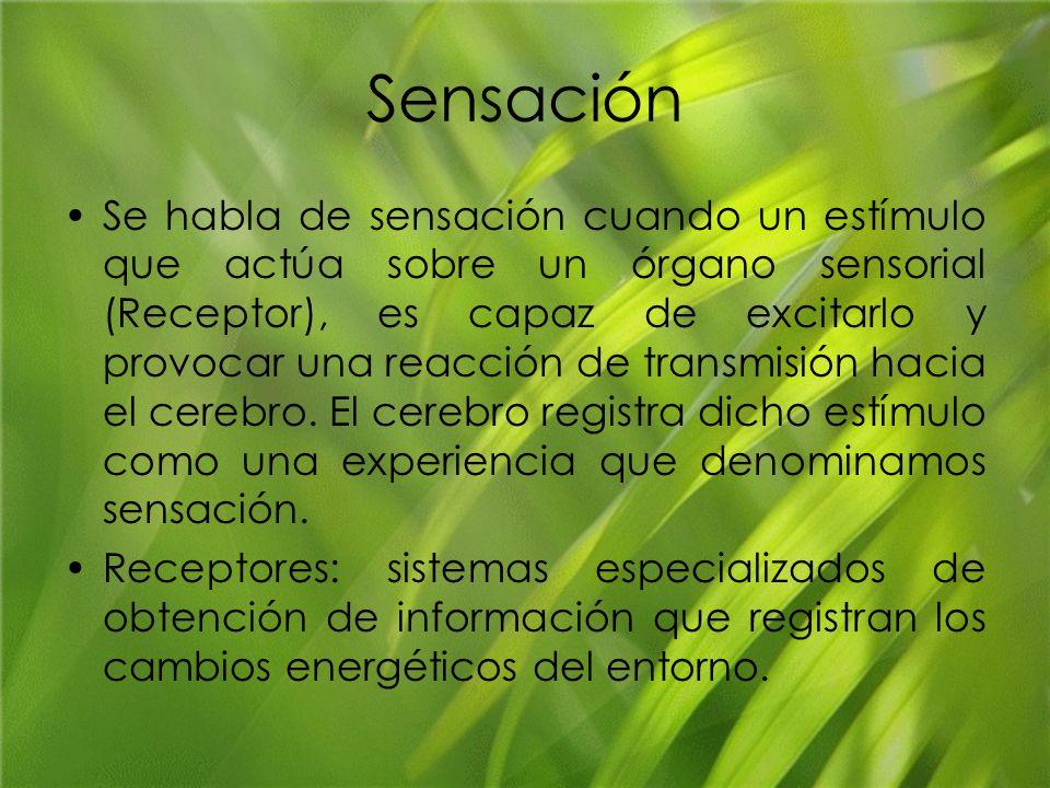 Sensación Se habla de sensación cuando un estímulo que actúa sobre un órgano sensorial (Receptor), es capaz de excitarlo y provocar una reacción de tr
