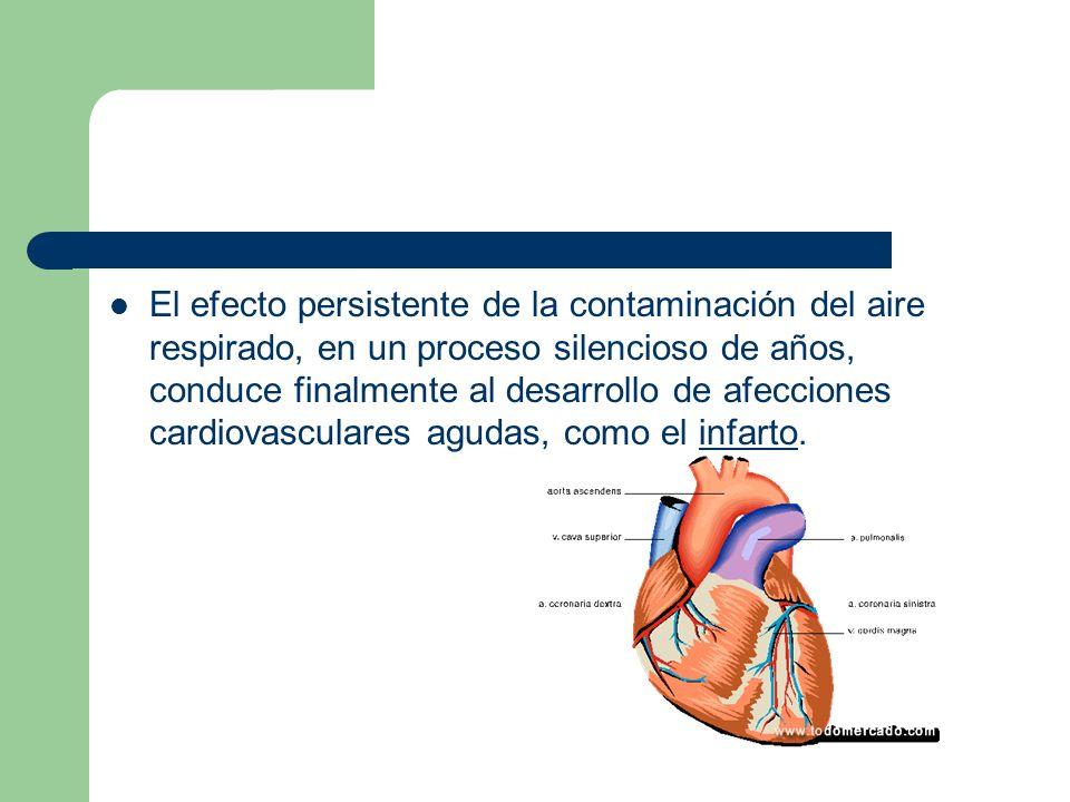 El efecto persistente de la contaminación del aire respirado, en un proceso silencioso de años, conduce finalmente al desarrollo de afecciones cardiov