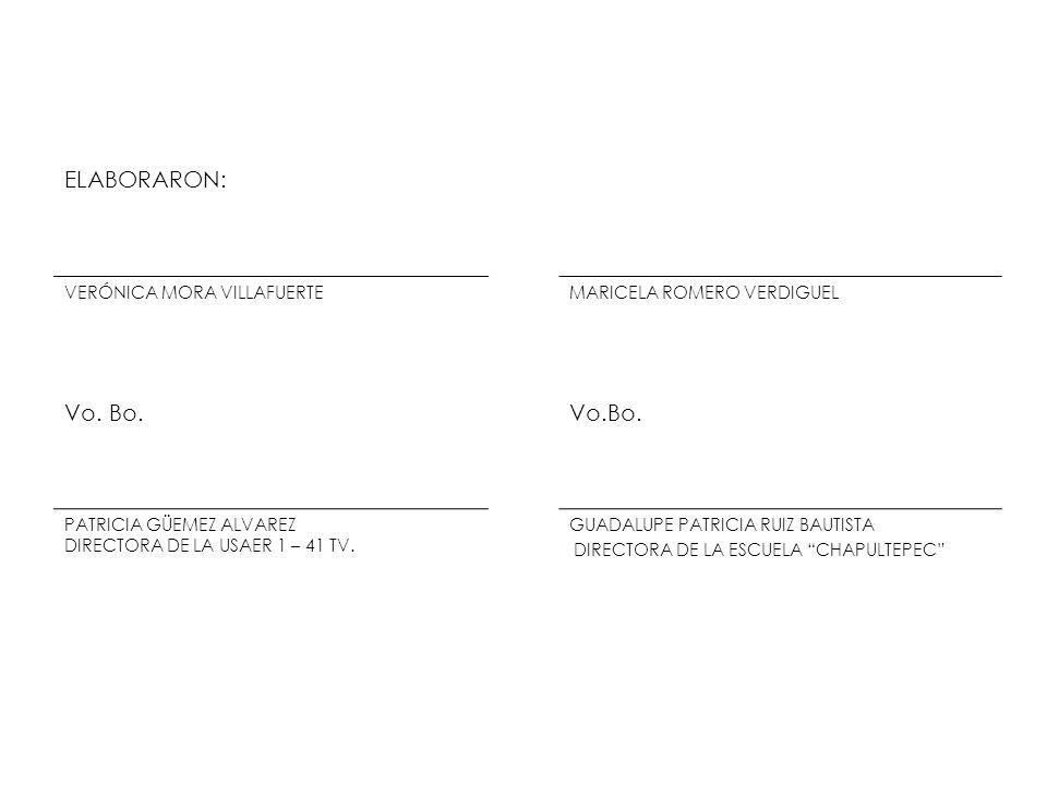 ELABORARON: VERÓNICA MORA VILLAFUERTEMARICELA ROMERO VERDIGUEL Vo. Bo. PATRICIA GÜEMEZ ALVAREZ DIRECTORA DE LA USAER 1 – 41 TV. GUADALUPE PATRICIA RUI
