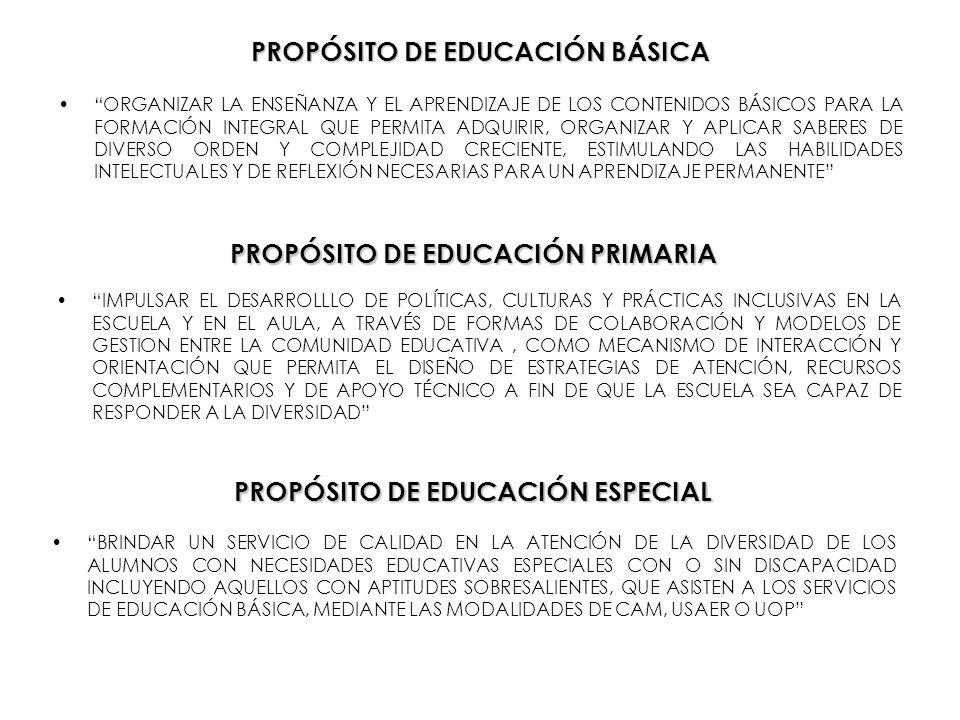 PROPÓSITO DE EDUCACIÓN BÁSICA ORGANIZAR LA ENSEÑANZA Y EL APRENDIZAJE DE LOS CONTENIDOS BÁSICOS PARA LA FORMACIÓN INTEGRAL QUE PERMITA ADQUIRIR, ORGAN