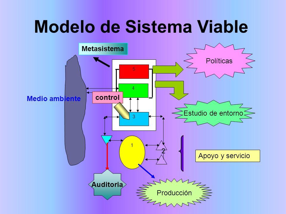 5 4 3 1 2 Modelo de Sistema Viable Políticas Estudio de entorno Medio ambiente Auditoria Producción Apoyo y servicio control Metasistema