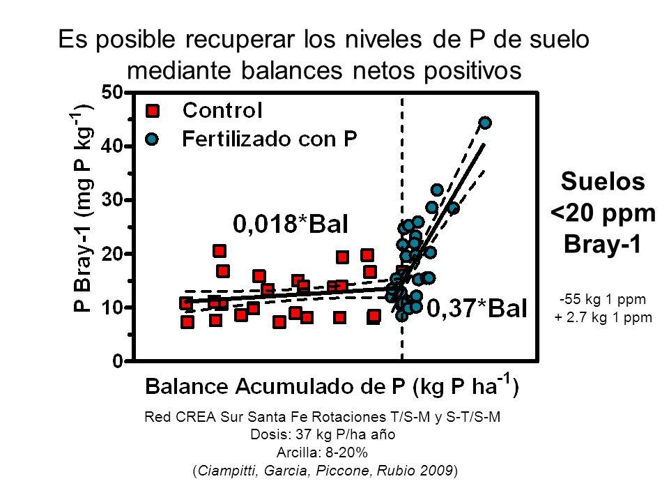 Es posible recuperar los niveles de P de suelo mediante balances netos positivos Red CREA Sur Santa Fe Rotaciones T/S-M y S-T/S-M Dosis: 37 kg P/ha añ