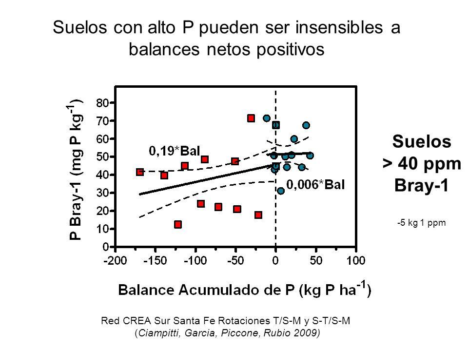 Suelos > 40 ppm Bray-1 -5 kg 1 ppm Red CREA Sur Santa Fe Rotaciones T/S-M y S-T/S-M (Ciampitti, Garcia, Piccone, Rubio 2009) Suelos con alto P pueden