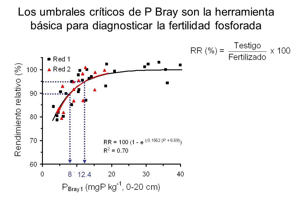Los umbrales críticos de P Bray son la herramienta básica para diagnosticar la fertilidad fosforada 8 12.4 8 8 8