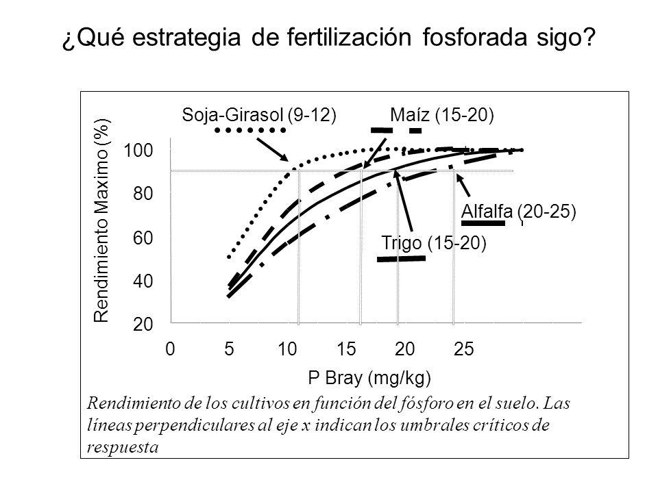 ¿Qué estrategia de fertilización fosforada sigo? 20 40 60 80 100 0510152025 P Bray (mg/kg) Rendimiento Maximo (%) Soja-Girasol (9-12) Maíz (15-20) Tri