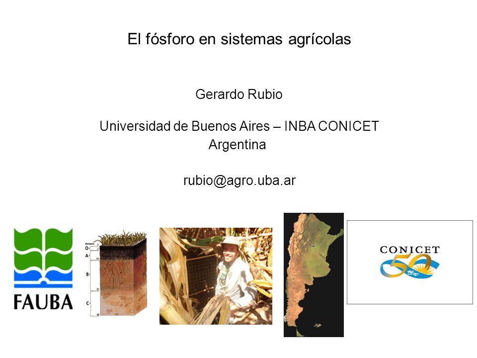 El fósforo en sistemas agrícolas Gerardo Rubio Universidad de Buenos Aires – INBA CONICET Argentina rubio@agro.uba.ar