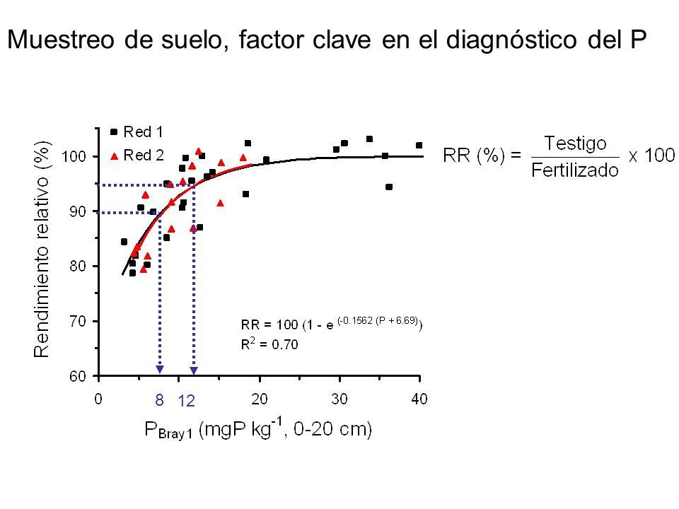 8 12 Muestreo de suelo, factor clave en el diagnóstico del P