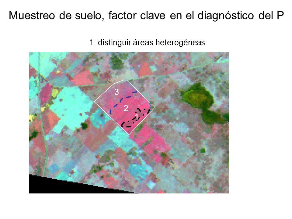 enero 1999 25 de Mayo (Buenos Aires) Muestreo de suelo, factor clave en el diagnóstico del P 1: distinguir áreas heterogéneas 1 2 3