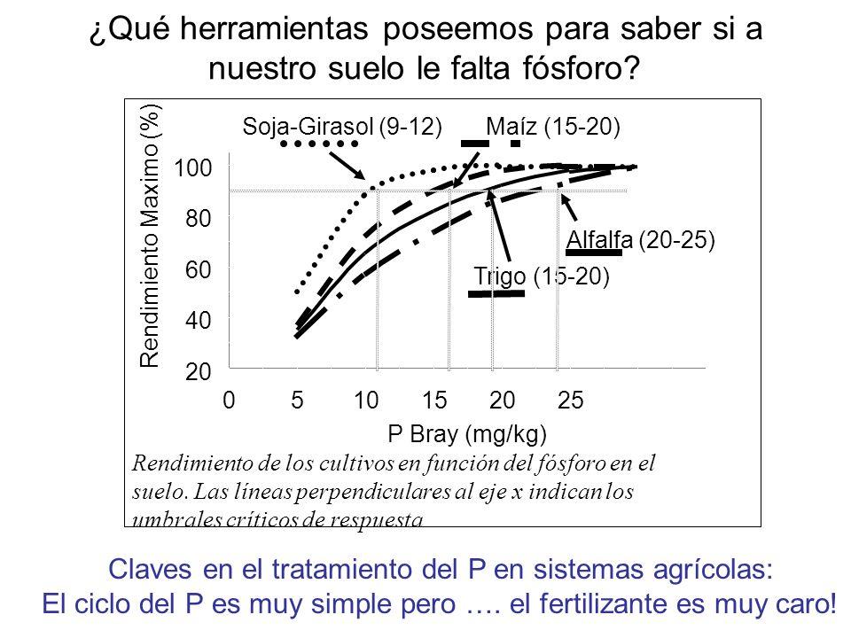 ¿Qué herramientas poseemos para saber si a nuestro suelo le falta fósforo? 20 40 60 80 100 0510152025 P Bray (mg/kg) Rendimiento Maximo (%) Soja-Giras