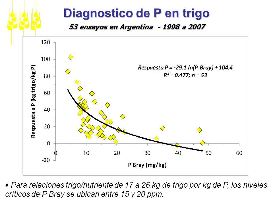 Diagnostico de P en trigo 53 ensayos en Argentina - 1998 a 2007 Para relaciones trigo/nutriente de 17 a 26 kg de trigo por kg de P, los niveles crític