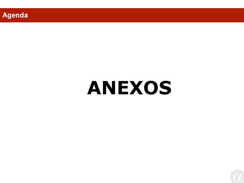 Agenda ANEXOS